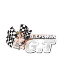 G.T. Power