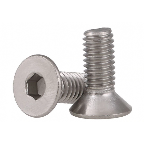 M2.5x16mm Flat Head Screw (10)